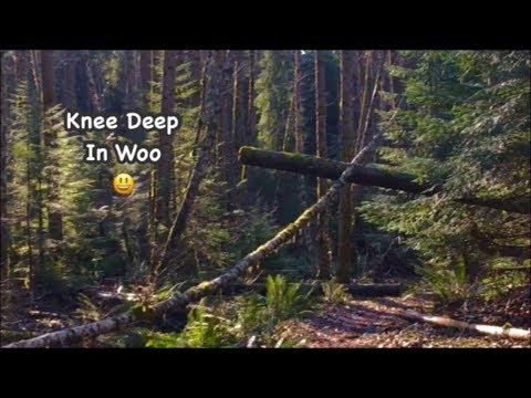 Knee Deep In Woo (Bigfoot Strangeness) with Barb & Gabby