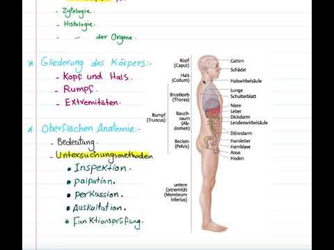 Beste Oberflächenanatomie Des Kopfes Fotos - Anatomie Von ...