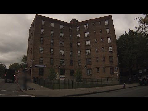 Queensbridge Houses, Long Island City, Queens NY