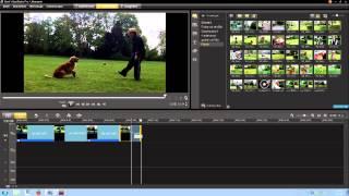 Corel VideoStudio Pro. Урок 05  как вырезать фото из видео