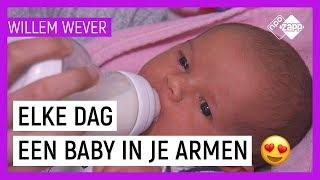 WAT DOET EEN KRAAMVERZORGSTER? | Willem Wever | NPO Zapp