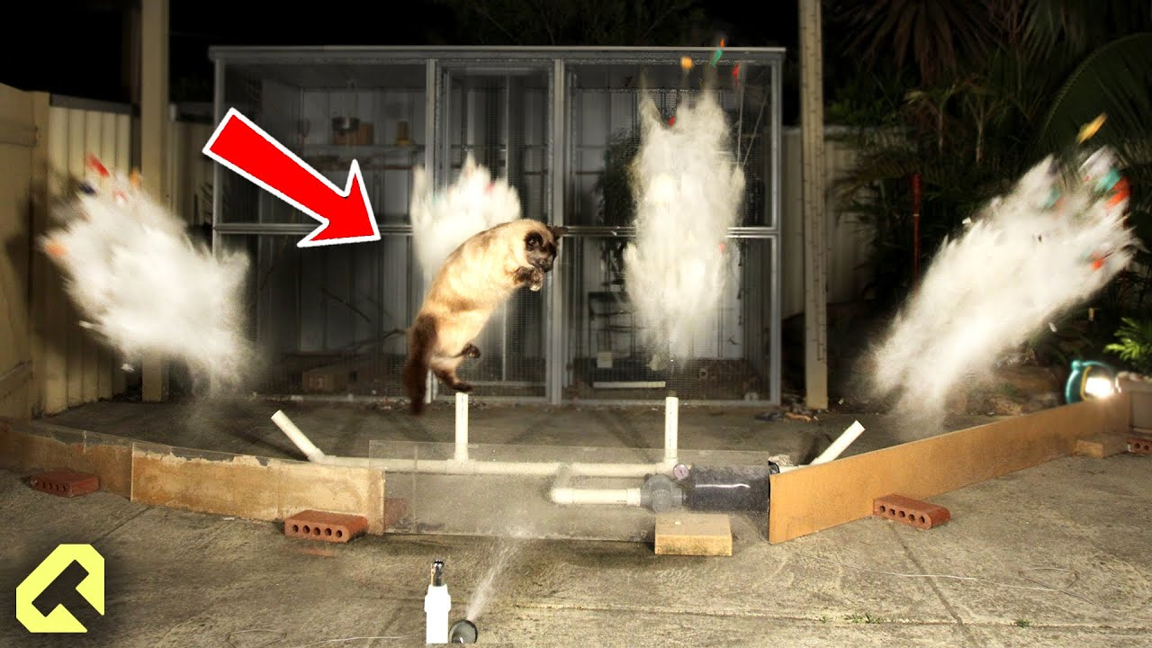 how to stop cats funny cat repellent youtube. Black Bedroom Furniture Sets. Home Design Ideas