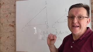 Подобие прямоуголных треугольников. 1 признак.