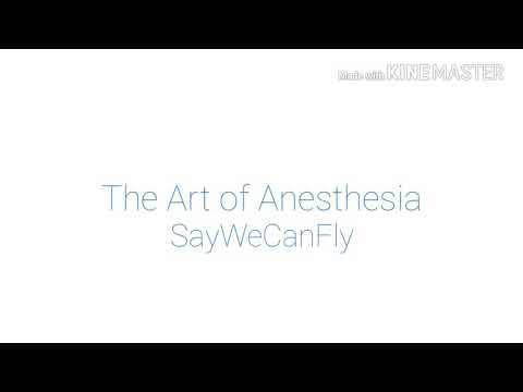 SayWeCanFly: The Art of Anesthesia (lyrics)