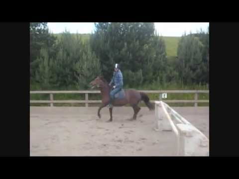 Jerusalem Farm - Bloopers - 2010