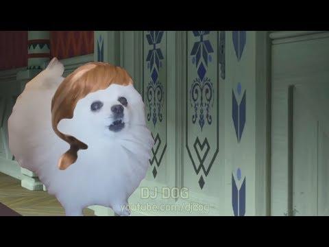 같이 개사람(?) 만들래? 강아지 리믹스 (겨울왕국 OST - Do You Want to Build a Snowman) (Gabe the Dog Cover)