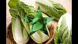 TRỒNG RAU , Tháng 7 nên trồng rau gì? , VƯỜN XANH