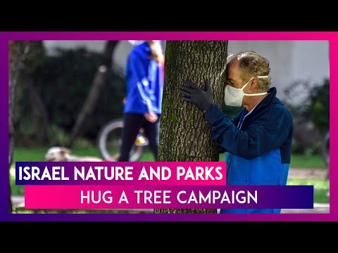 Israel Nature And Parks Authority Urges People To Hug A Tree Amid Pandemic, Know Its Benefits