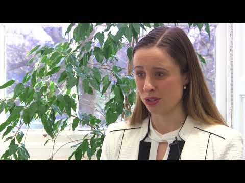 Dissertation - LLM Law Via Online Learning