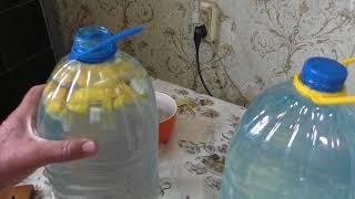 Делаем квас из берёзового сока Два варианта