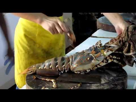 Tôm hùm tuyệt hảo, 3,5kg - lobster