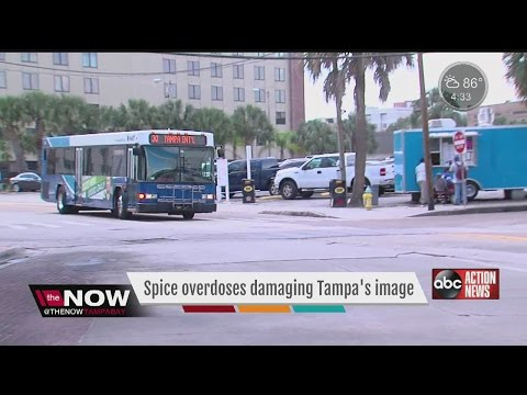 Spice overdoses impacting the City of Tampa's image