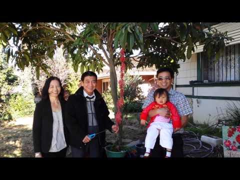 Dot phao mung nam moi 2014