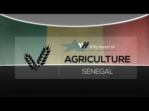 Agriculture  Senegal - Why invest in 2015