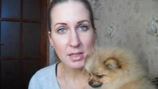 Как приучить щенка ходить в туалет на улицу ?