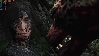 Rise of the Tomb raider GTX 750ti med setting