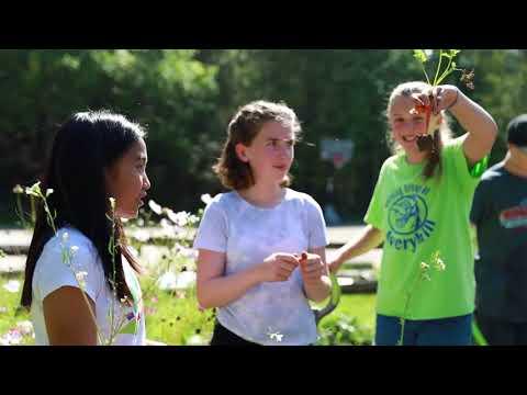Montessori Adolescent School