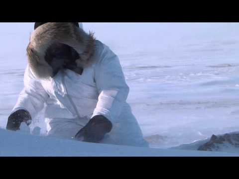 Arctic Research with Dr. Nelson O'Driscoll