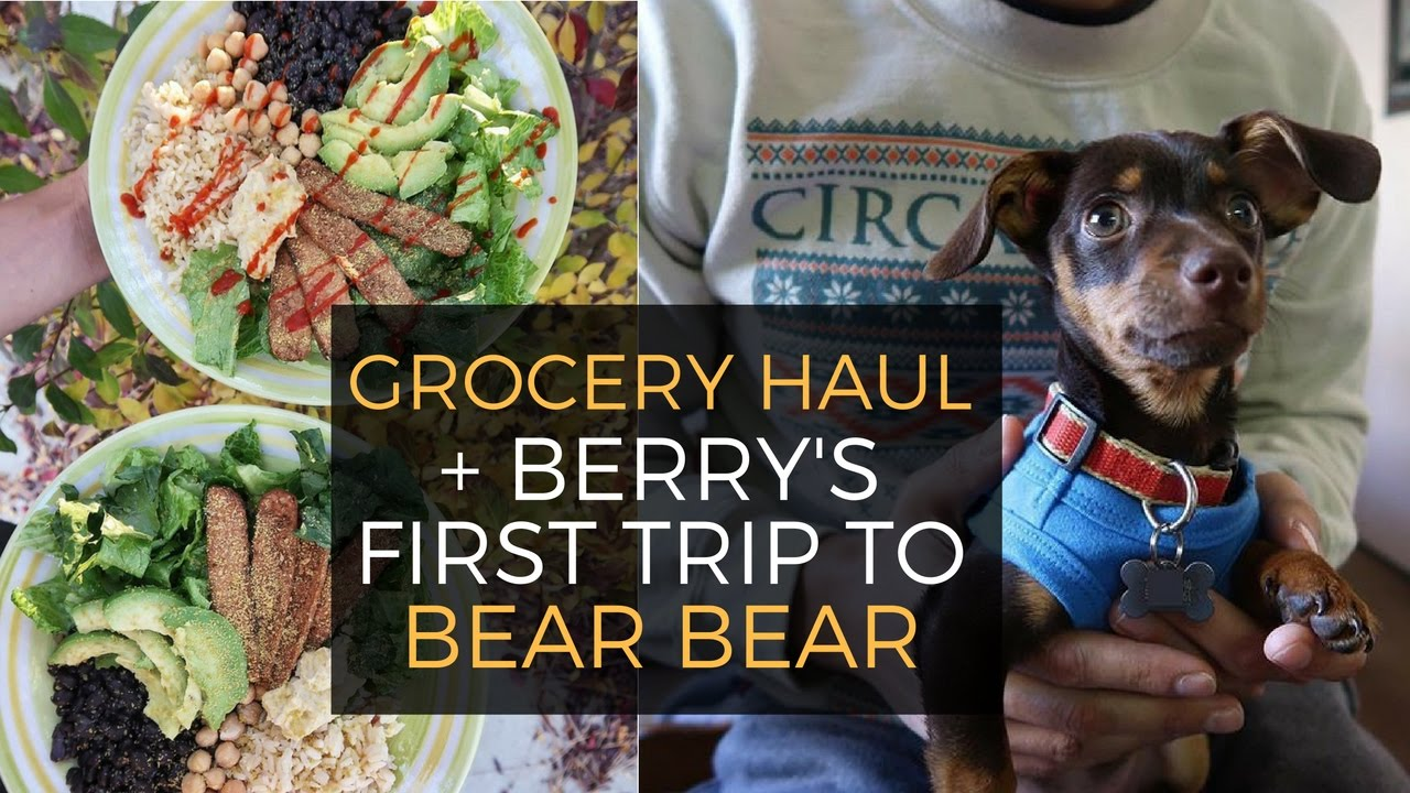 Sprouts Grocery Haul + Berry's First Trip To Big Bear