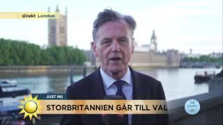 """Rysarval i Storbritannien: """"Kan bli oerhört jämt""""  - Nyhetsmorgon (TV4)"""