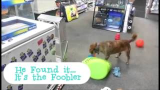 Foobler Dog Toy Fun - A Dog