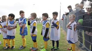 Socceroos stars give coaching tips to Williamstown Soccer Club.