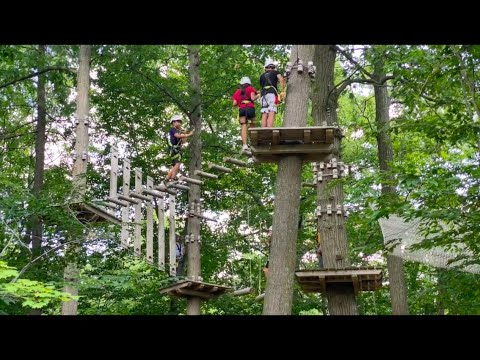 Treetop Trekking Hamilton - Tree Walk Village