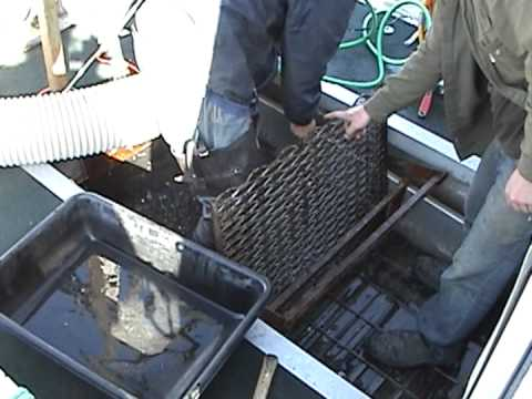 Gold Dredging in the Bering Sea, Gold Diving