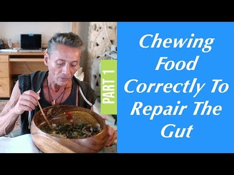 Chewing Food Correctly To Repair The Gut Part 1 | Dr. Robert Cassar