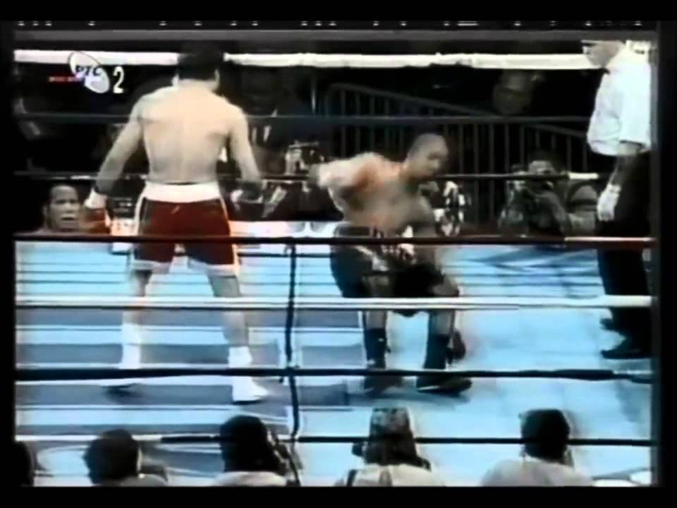 Download 50 Best Left Hand Knockouts in Boxing (Highlights)