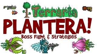 Video Terraria 1.3 Plantera Guide! Arena & SOLO Boss Fight! (Let's Play, PC Gameplay) download MP3, 3GP, MP4, WEBM, AVI, FLV November 2018