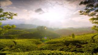 Celtic Woman -  The Hills of Ireland ~ Celtic Music ~ EpicSound Music