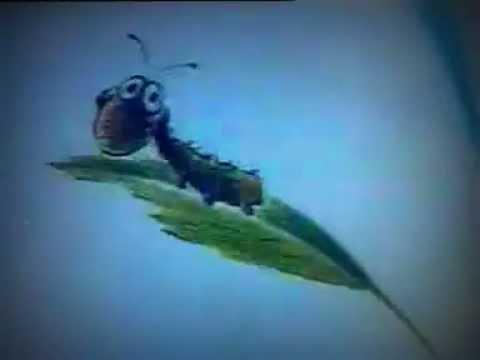 Мультфильм воланчик и гусеница