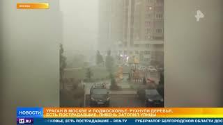 Появились первые жертвы урагана в Москве