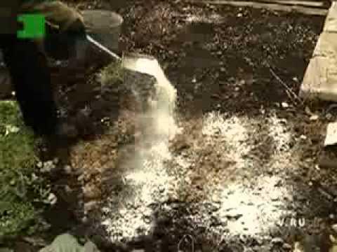 Осенняя обработка почвы в саду