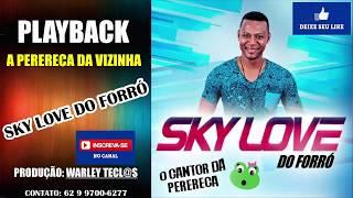 PLAYBACK PERERECA DA VIZINHA SKY LOVE DO FORRÓ