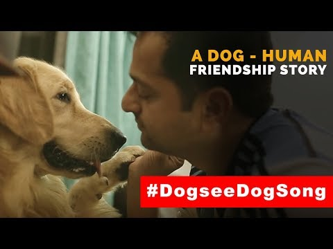 I'll be your friend - A Friendship Day Short Movie #DogseeBytes
