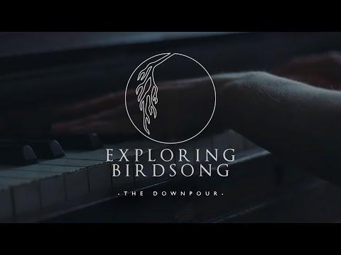 Exploring Birdsong - The Downpour (Official Video) Mp3
