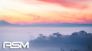 Forest - Beautiful Cinematic Background Music / Inspirational Orchestral Music - by AShamaluevMusic