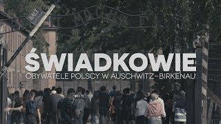 ŚWIADKOWIE. OBYWATELE POLSCY W AUSCHWITZ-BIRKENAU thumbnail