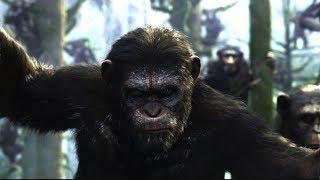 Планета обезьян: Война - Русский Трейлер HD на Kinosha.net