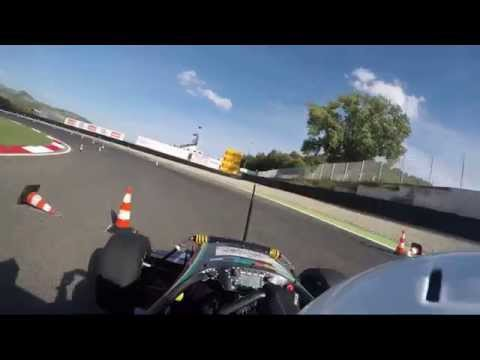 Formula Student Italy 2015 - Endurance - DHBW Engineering Stuttgart e.V. (eSleek15, Car 667)