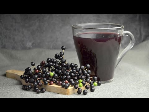 The Health Benefits Of Elderberry Syrup | Celeb Nutritionist Keri Glassman