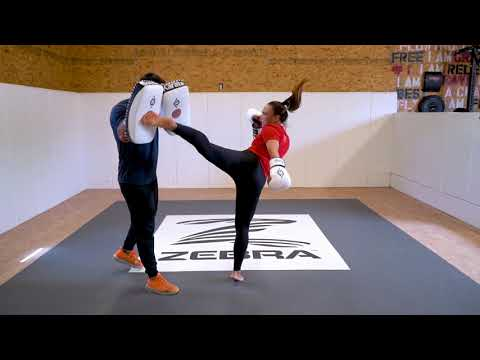 How to use different types of mitts for Martial Arts Training