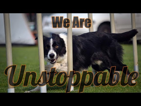 We Are Unstoppable | Syrius Agility Sport Music: The Score - Unstoppable