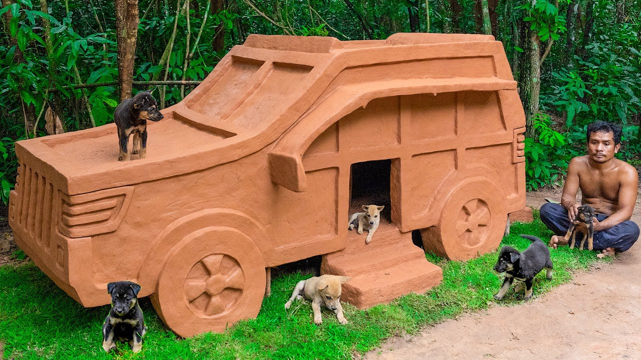 Build New Dog House Mud For Homeless Puppies