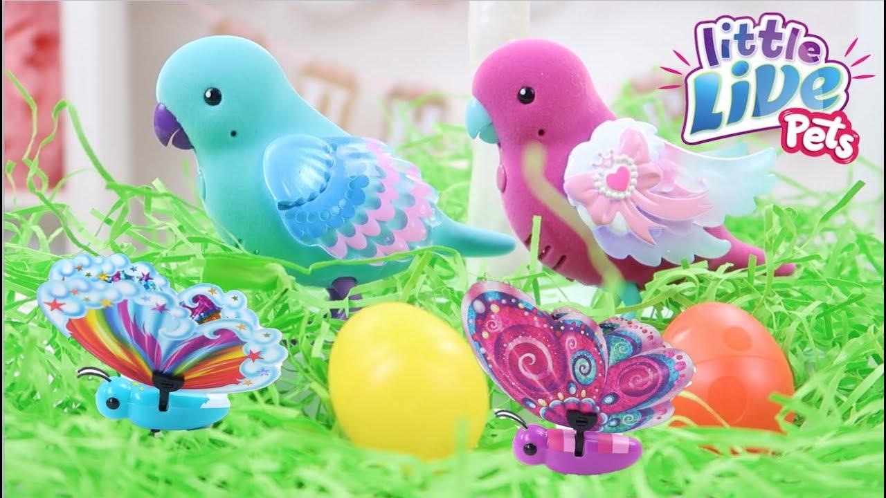 Little Live Pets Light Up Songbirds Flutter Wings Butterflies Ad Youtube