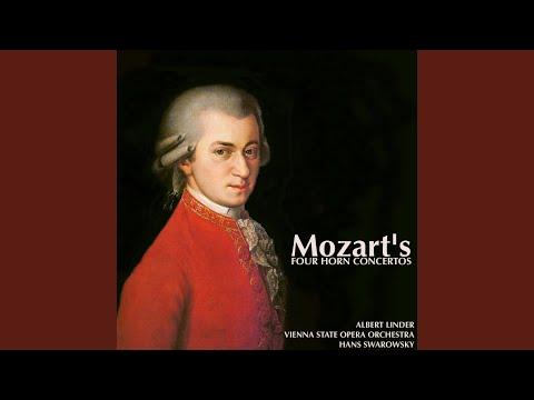 Horn Concerto No.4 In E Flat Major, K.495: I. Allegro Moderato