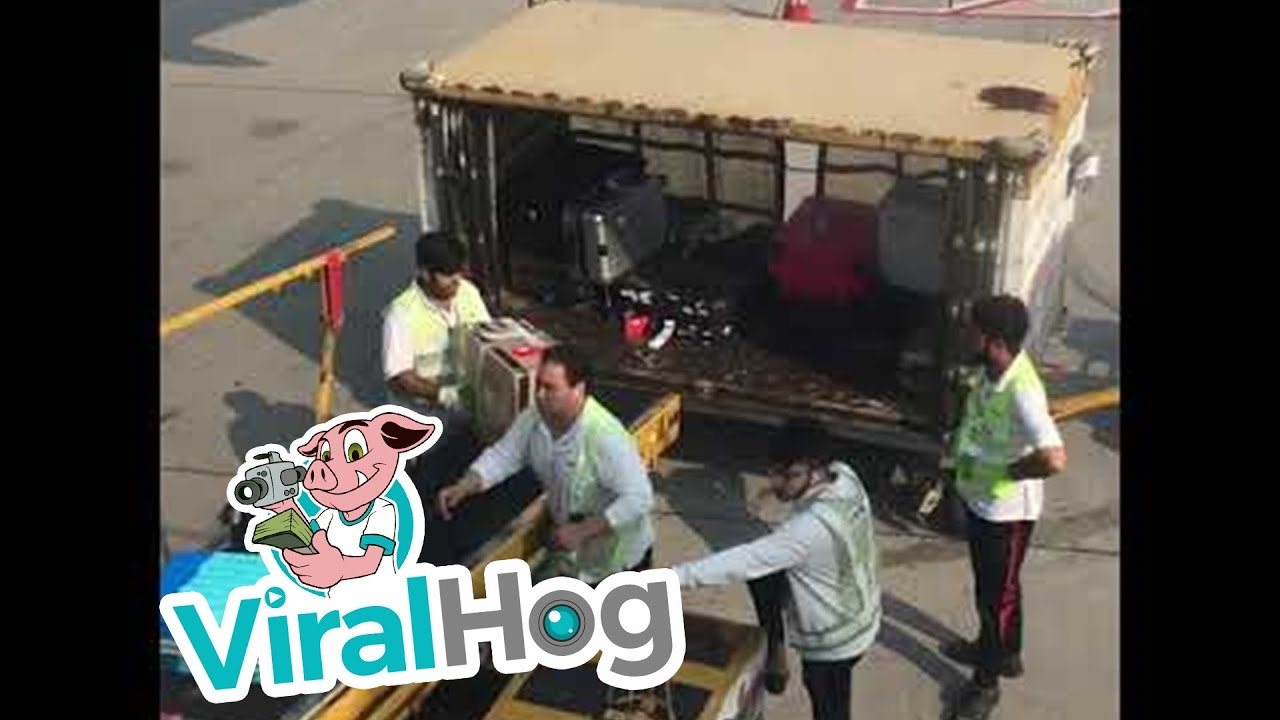 Hong Kong Airport Employees Toss Luggage Carelessly || ViralHog