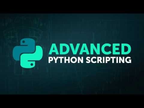 Курс Python. Уровень 1. Основы программирования в «Специалист»